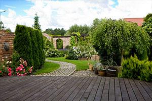 Gartengestaltung in Mainz